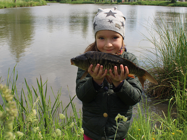 Коломияни запустили 80 кілограмів риби у «танкове» озеро (відеорепортаж)