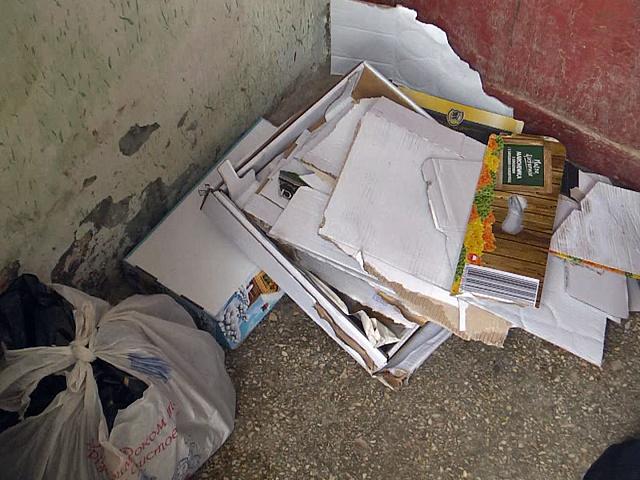 Коломиянка перетворила власну квартиру у смітник (відеосюжет)